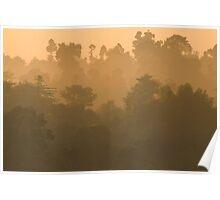 Dawn at Kinabatangan Poster