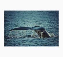 Tail of the Humpback Whale (Megaptera novaeangliae) T-Shirt
