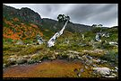 Mount Field Landscape by Robert Mullner