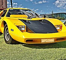 Yellow Purvis Eureka with Black bonnet by Ferenghi