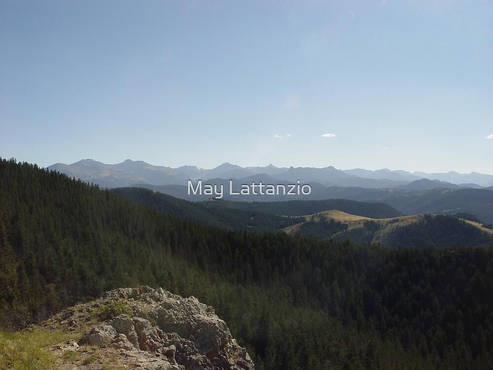Yellowstone Forever by May Lattanzio