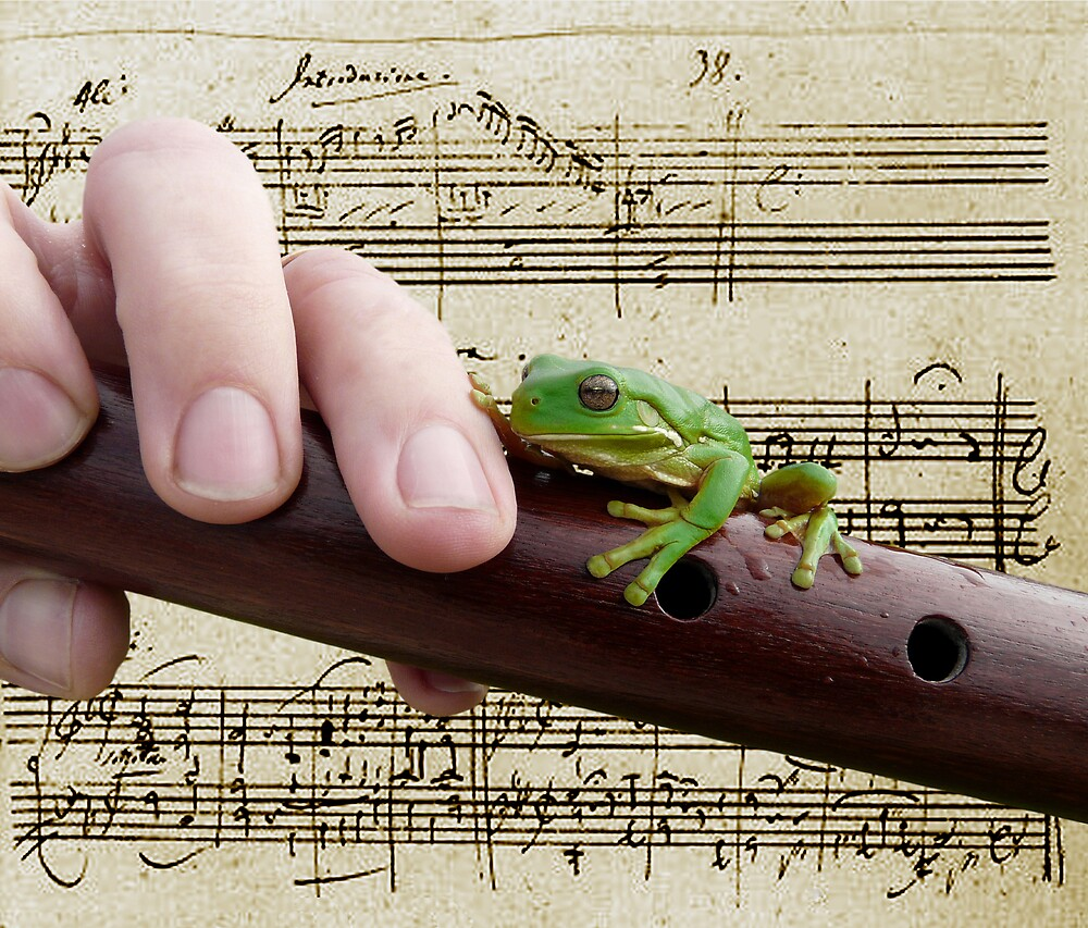 The Magic Flute by JulieM