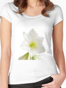 White Amaryllis Flower Women's Fitted Scoop T-Shirt