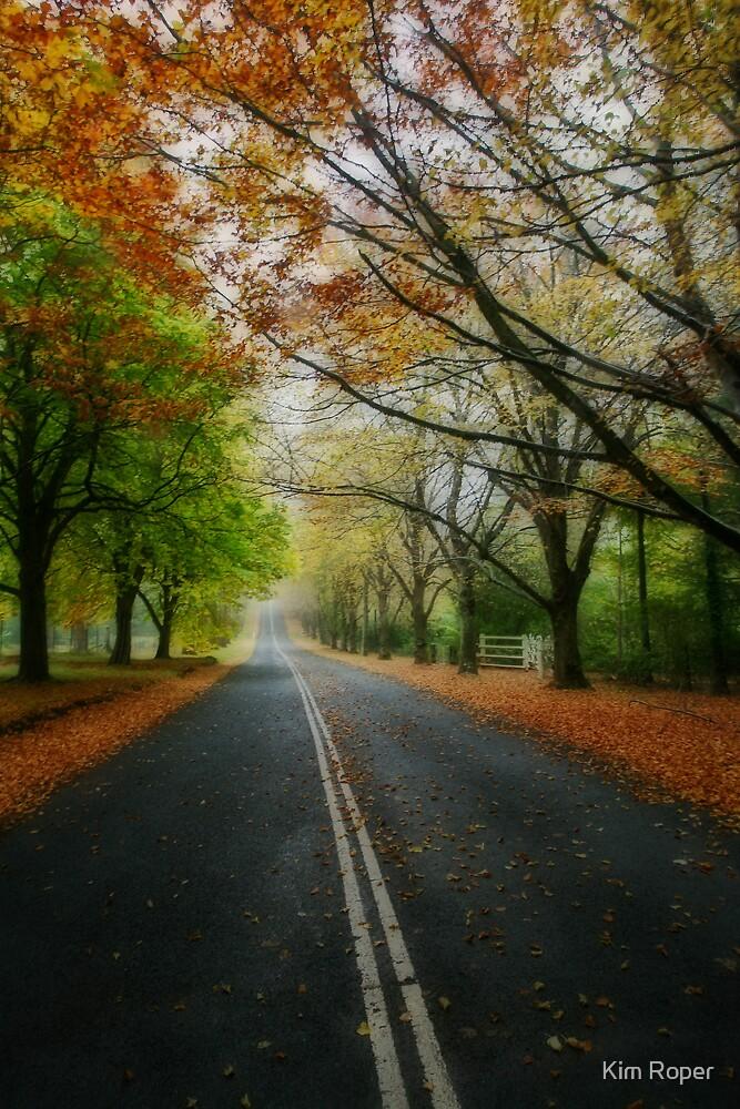 Autumn Journey by Kim Roper
