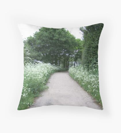 Summertime path at Kingsbury water park. Throw Pillow