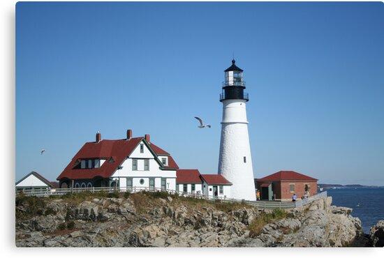 Portland Head Light House with seagull by Linda Jackson