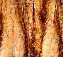three tree of life by Christopher Birtwistle-Smith