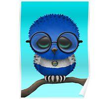 Nerdy El Salvador Baby Owl on a Branch Poster