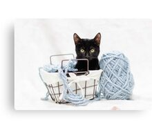 Kitten in Yarn Basket Canvas Print