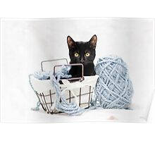 Kitten in Yarn Basket Poster