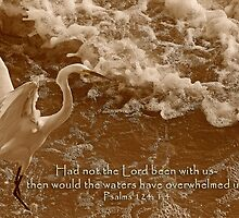 Had not the Lord been with us, then would the waters have overwhelmed us  by Bonnie T.  Barry