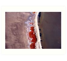 Natures' art in abstract. Art Print