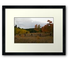 Autunm Colors Framed Print