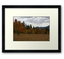 Autunm High Framed Print