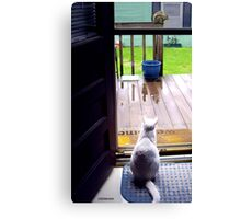 Big Lucy Sees a Squirrel Canvas Print