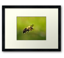 B-130 on Approach  Framed Print