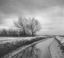 Moonland by Traven Milovich