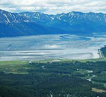 Scenic Alaska  by DSHill