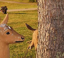 Damaged deer by Diana Forgione
