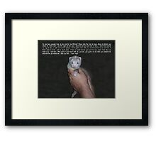 Ferret Love Framed Print