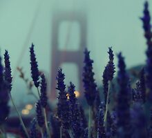 """Purple Haze Daze"" Golden Gate Bridge by Jenn Ramirez"