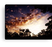 incendiary Canvas Print