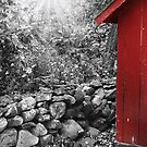 Red Shed by Melissa Arel Chappell