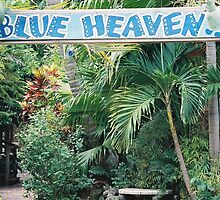 Blue Heaven by Amber Finan