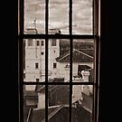 Through the Window  by Melissa Kirkham