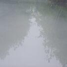 LAKE VIEW OF TREES by ELIZABETH B