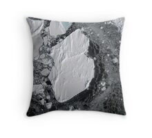 Lone Emperor on Ice Throw Pillow