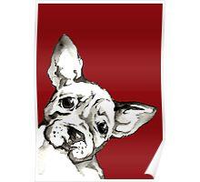Dog 1 Poster