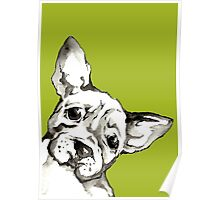 Dog 2 Poster