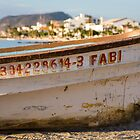 Fabi - La Paz Boat on the Malecon by Alan LeClair