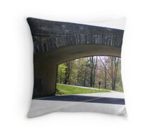 Bridge over the Parkway Throw Pillow