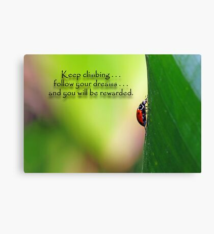 Keep climbing . . . Canvas Print