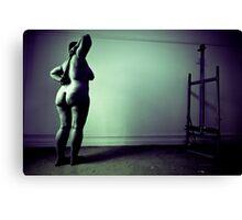 Studio session 002 LK Canvas Print