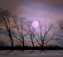 Bare souls under moonlight by Vasile Stan