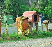 Mailbox Assortment # 3 by Penny Smith