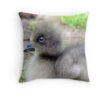 A Lesser Snow Goose Gosling Throw Pillow