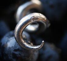 Cork Screw by Steve Chapple