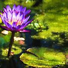 Waterlilies Impressions – Sunny Purple Pair by Georgia Mizuleva