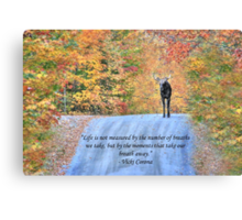 Moments That Take Our Breath Away - Quote Canvas Print