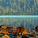 Early morning Lake ST Claire Tasmania by helmutk