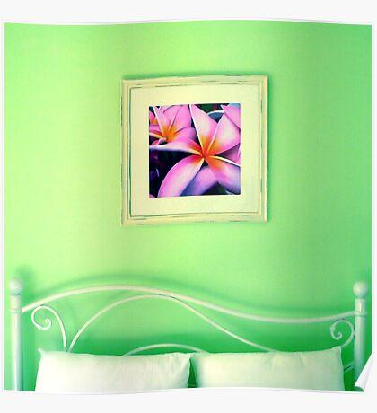 Calypso Dreams Poster