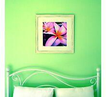 Calypso Dreams Photographic Print