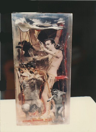 """""""The Collector""""1985 Back by Cathie Brooker"""