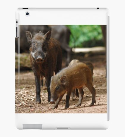Mother Pig and Her Piglets iPad Case/Skin
