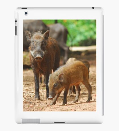 Mother Pig and Her Piglets 2 iPad Case/Skin