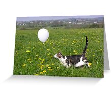 Jasper Cat and the White Balloon Greeting Card